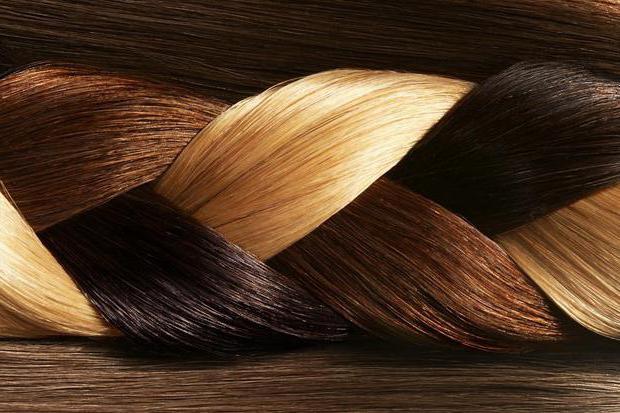 капус палитра цвета
