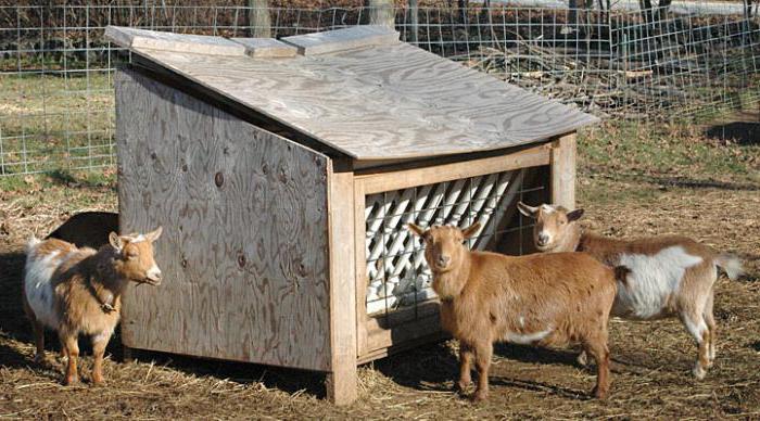 кормушка для коз своими руками