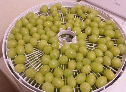 Сушить виноград в домашних условиях