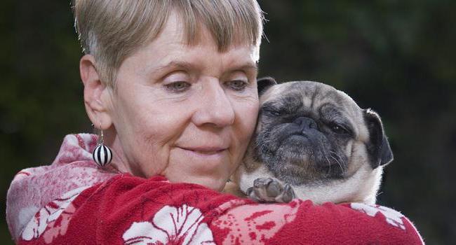 Собака для пожилых людей