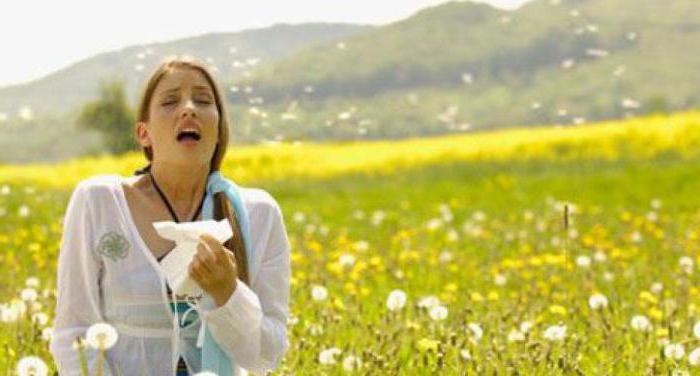 Аллергия в начале августа