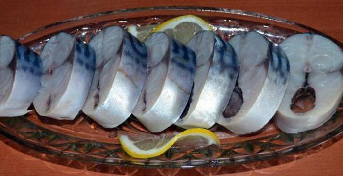 скумбрия соленая в домашних условиях сухой посол