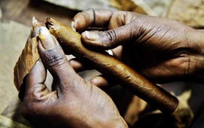 настоящая кубинская сигара