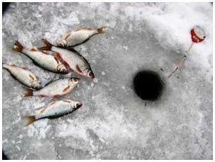 Рыбалка как сделать леску мягкой 5