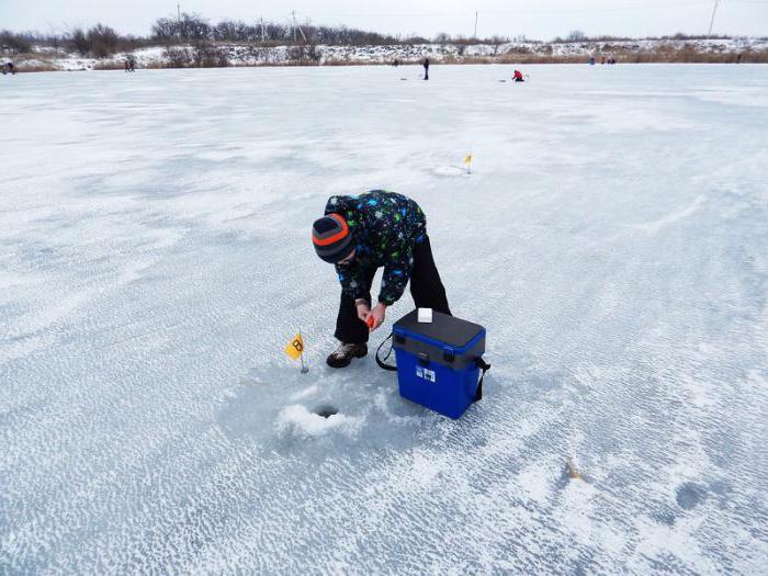 скачать русскую версию игры зимняя рыбалка