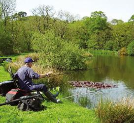 рыбалка на толстолоба видео онлайн