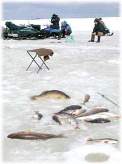 Рыбалка на Днестре зимой
