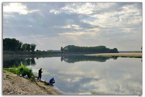 клев рыбы в волгоградской области на сегодня