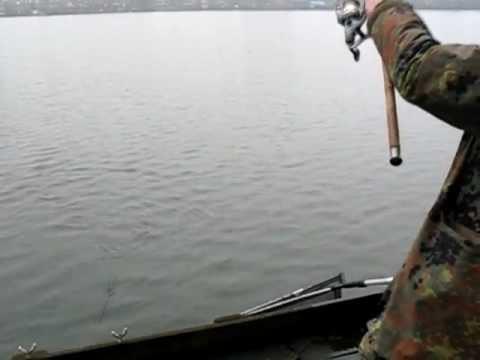 ловля язя весной на фидер на реке видео
