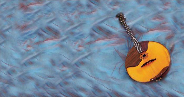 Что такое домра в музыке