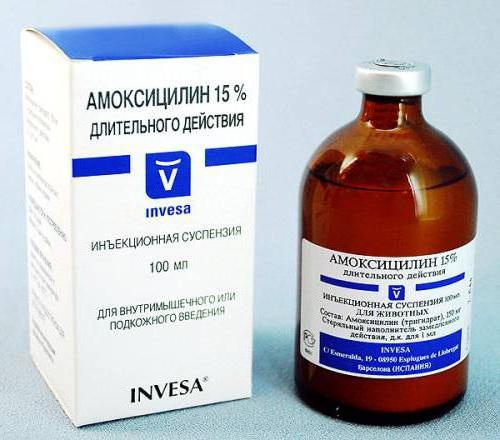 амоксициллин таблетки для профилактики