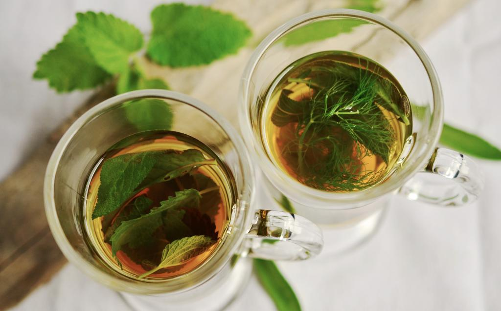decoction of herbs