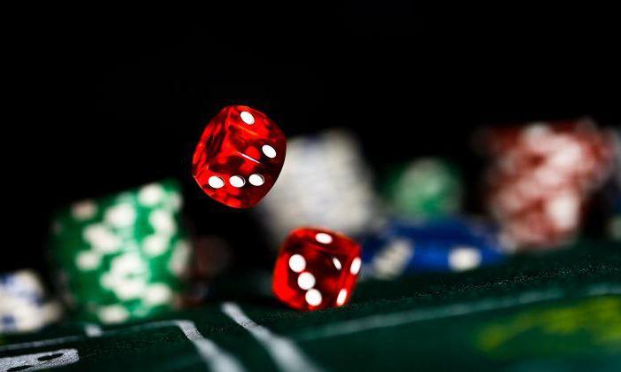 Що звернути увагу при виборі квартири під казино моделювання ігор казино
