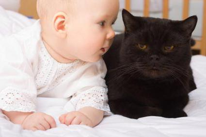 Ребенок в 1 год