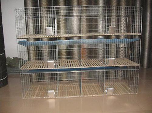 Размеры клеток для кроликов своими руками фото 74