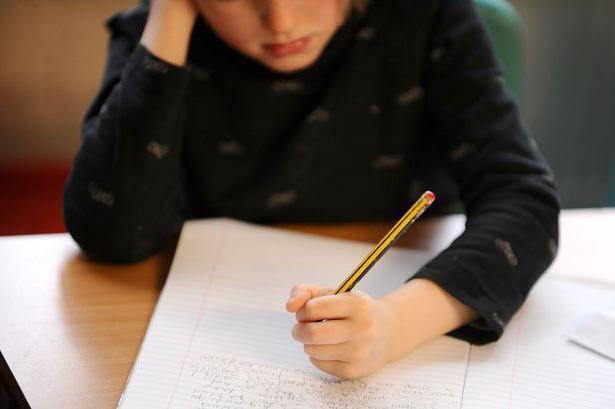 Закономерность воспитания - это... Общие закономерности воспитания