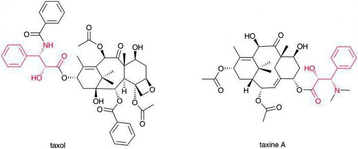аминокислоты биохимия 20