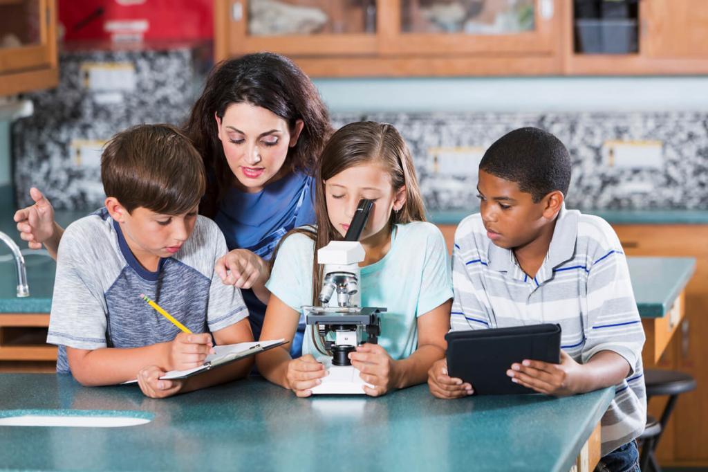 Образование в культуре картинки
