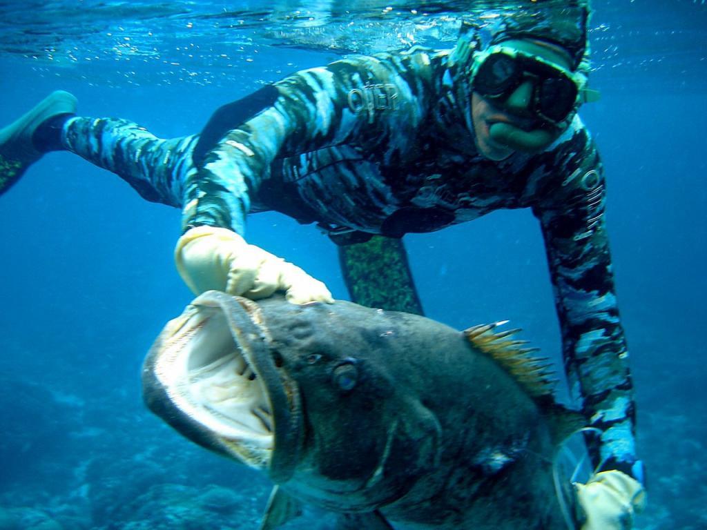 Как проводится подводная охота на Волге