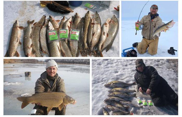 фиш хангри отзывы рыбаков
