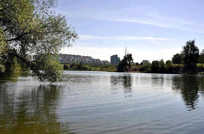 ландшафтный парк митино адрес