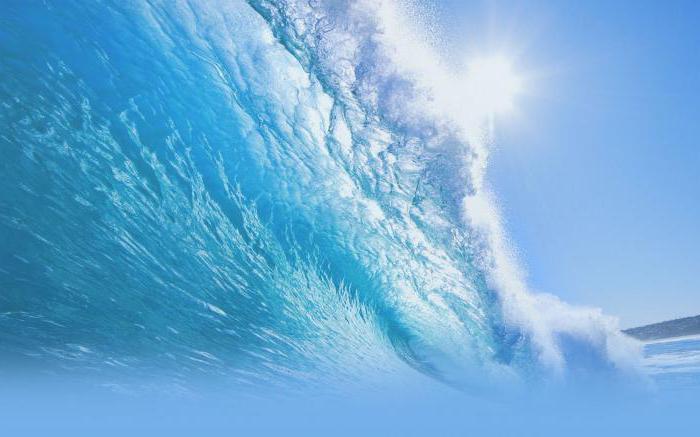Наиболее важные биологические функции воды