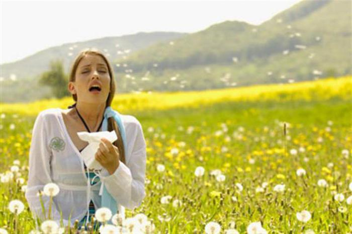 пиявки от аллергии отзывы