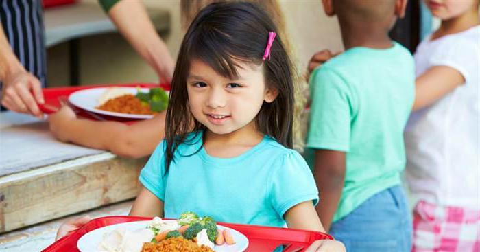 заявление на бесплатное питание в школе образец