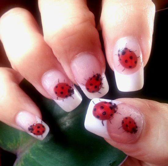 божья коровка на ногтях
