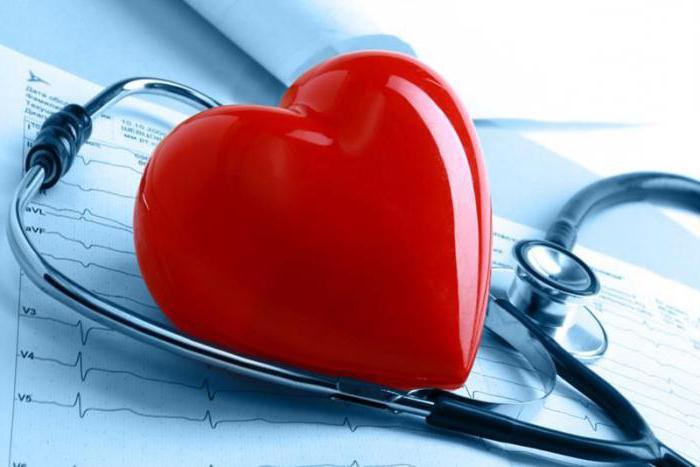 Как укрепить сердечную мышцу
