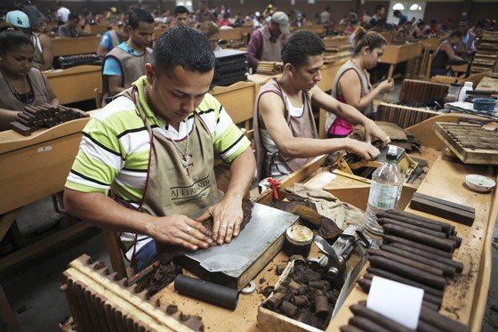 how to make cigars