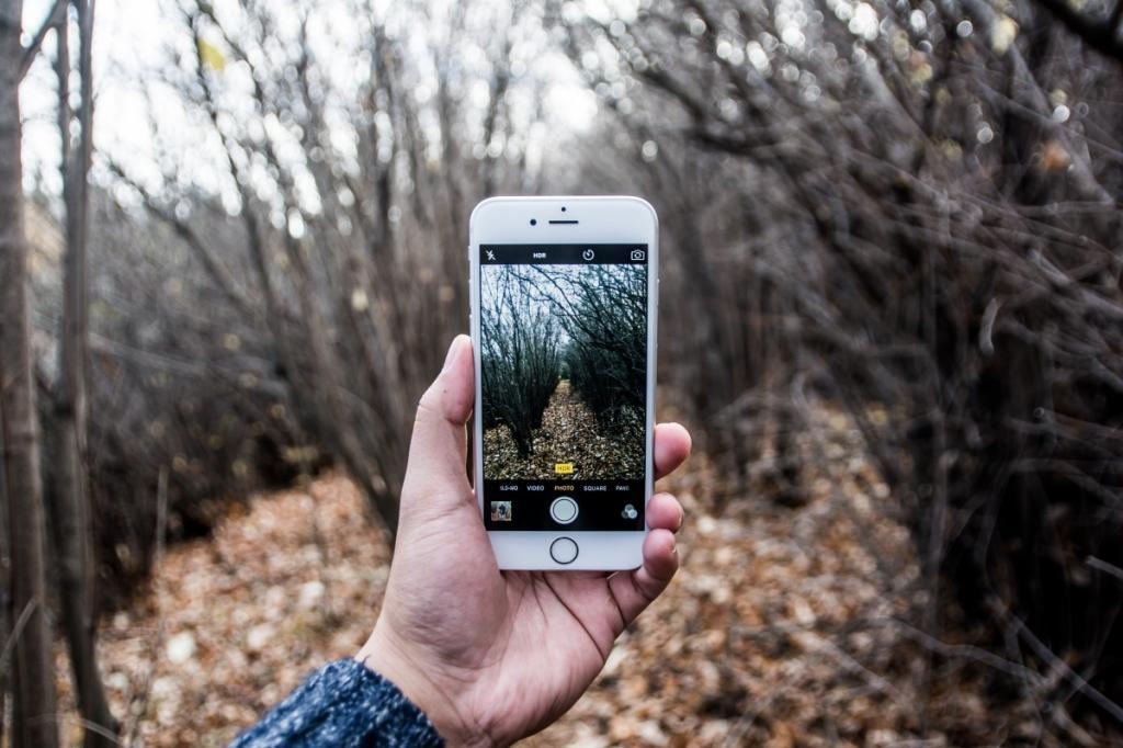 телефон издает звук как будто фотографирует выращивании антуриума, большое