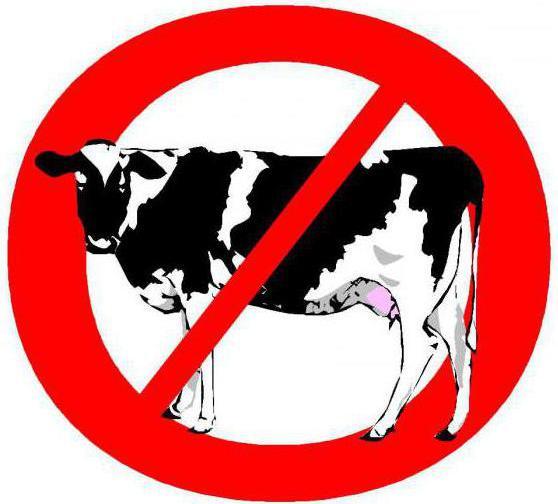 аллергия на молочный белок продукты