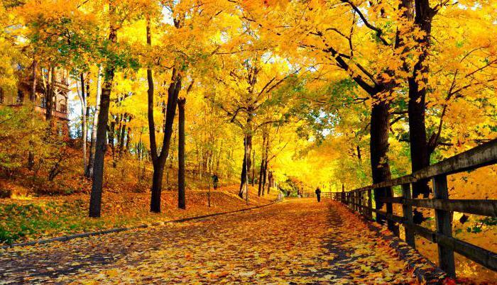 викторина про осень с ответами