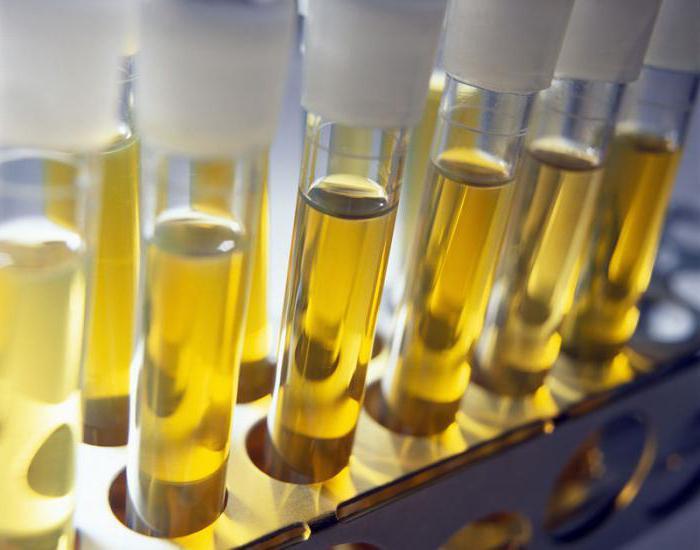Рост микроорганизмов обнаружен что это 20