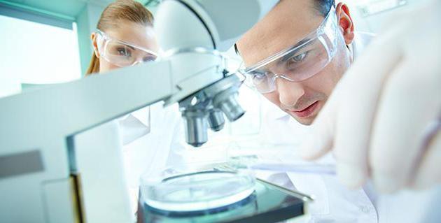 Прайслист на лабораторные анализы  Медицинская Клиника