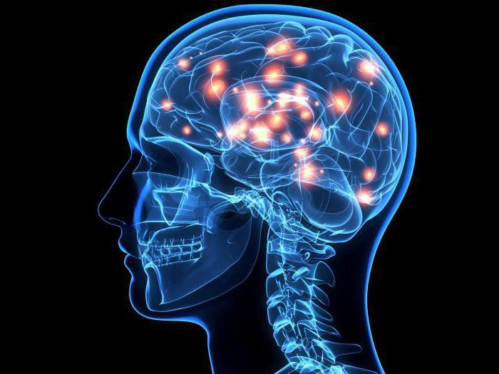 Каталепсия