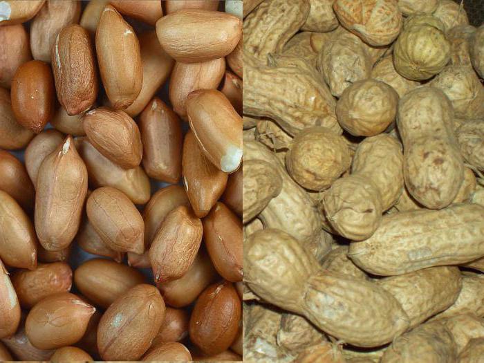 Сколько арахиса можно употреблять в день