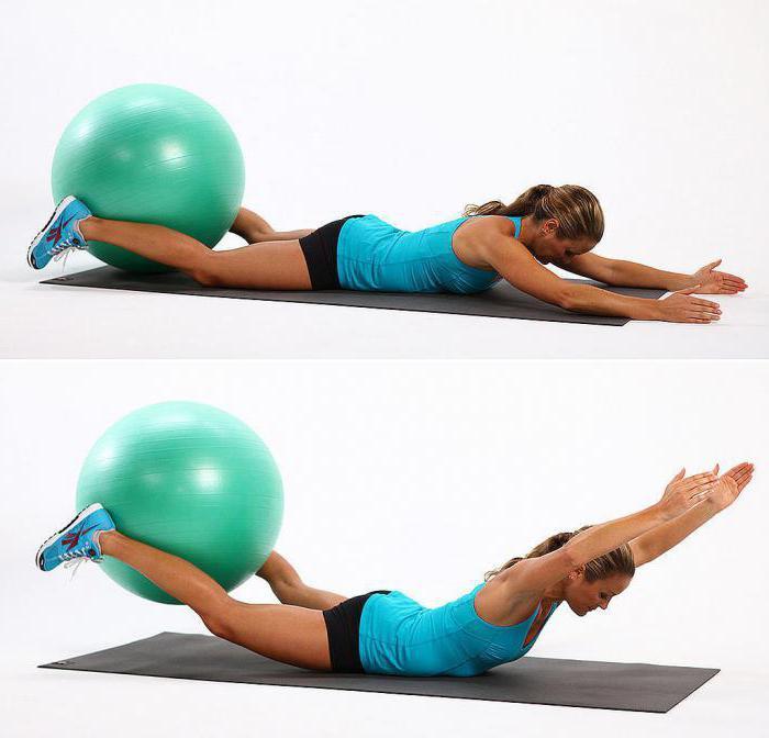 abl занятия фитнесом