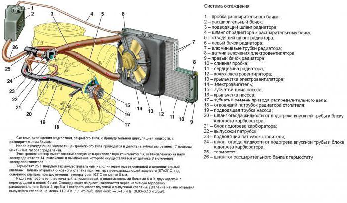 Система охлаждения ваз 2114 8 клапанов инжектор