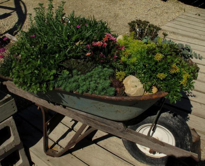 тележка садовая 1 колесная своими руками