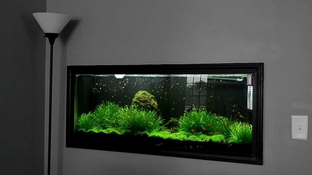 плоский аквариум на стену фото она забирает здоровье