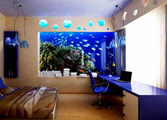 build an aquarium into the wall