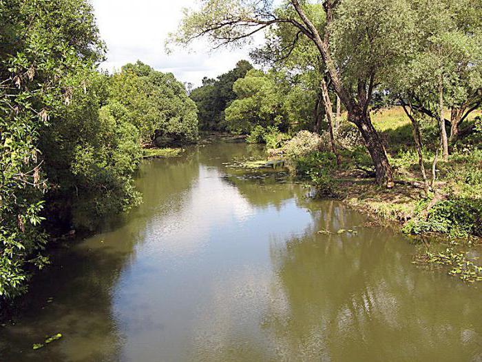 можно ли купаться в реке Лопасня