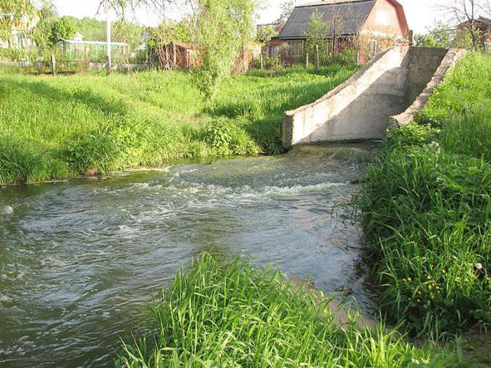 можно ли есть рыбу из реки Лопасня