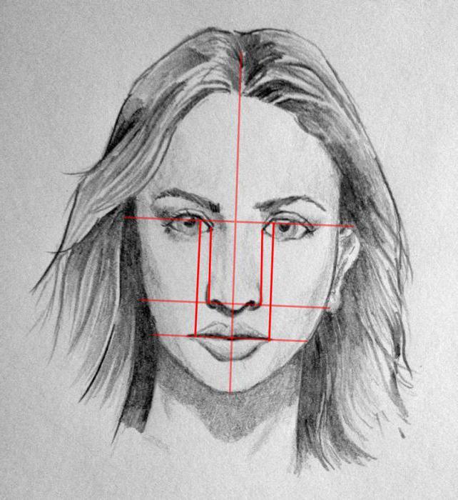 1828370 Как нарисовать голову человека
