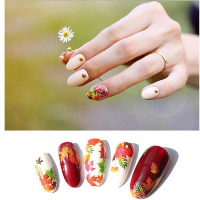 как нарисовать кленовый лист на ногтях