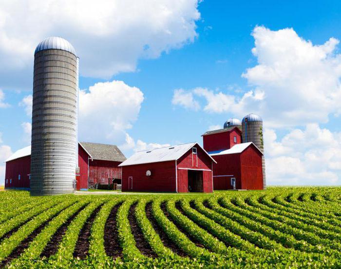 особенности купли продажи земель сельскохозяйственного назначения