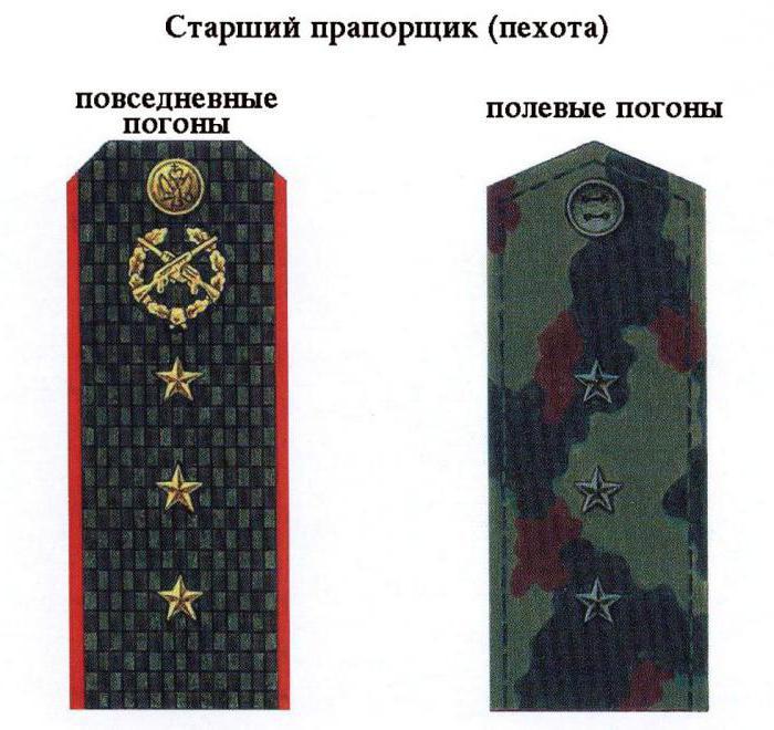 погоны российской армии нового образца