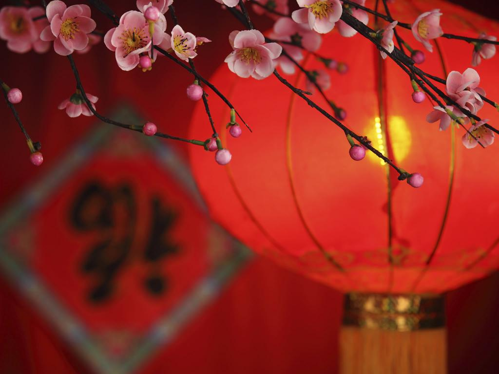 Chinese New Year - Spring Festival